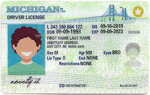Michigan ID-Buy-ID.com