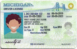 Michigan ID-Buy-ID.com