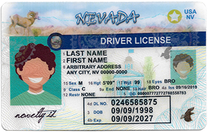 Nevada ID-Buy-ID.com