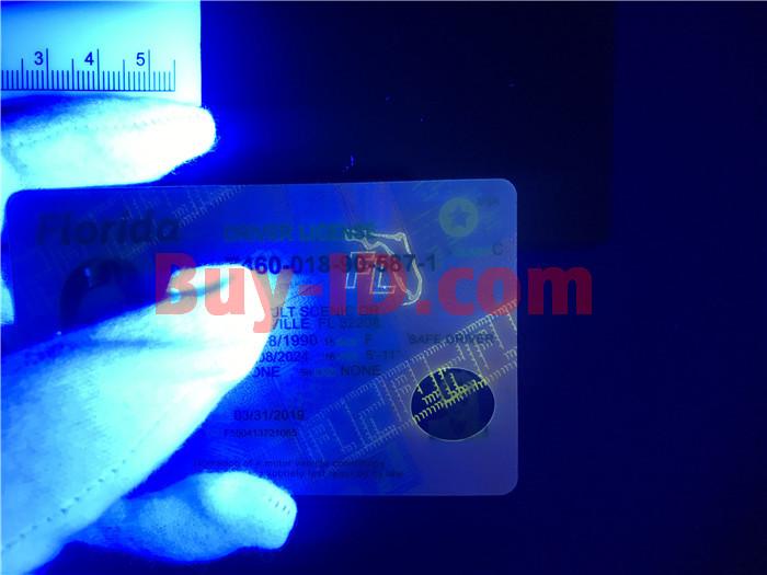 New Florida ID UV rendering
