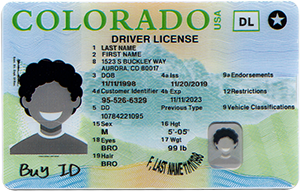 New Colorado ID-Buy-ID.com