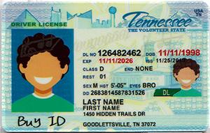 Tennessee ID-Buy-ID.com