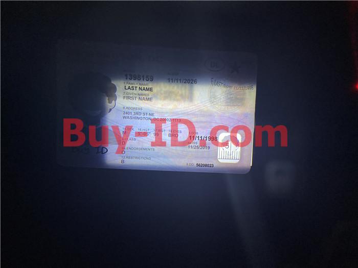 Washington DC ID Transparent little head