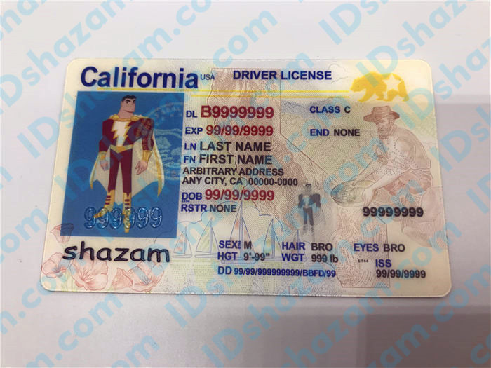 Premium Scannable New California State Fake ID Card Positive Display