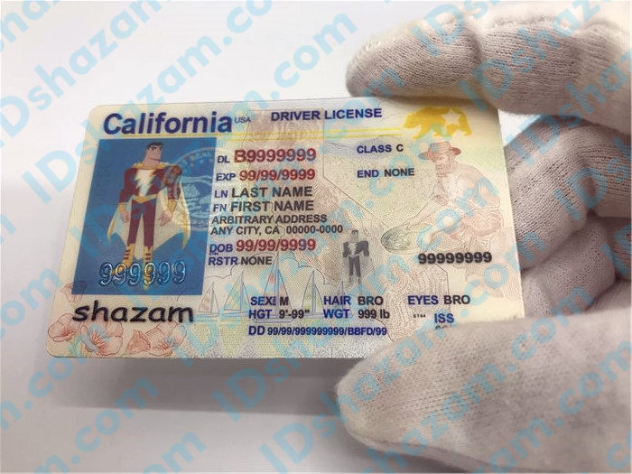 Premium Scannable New California State Fake ID Card Handheld Display