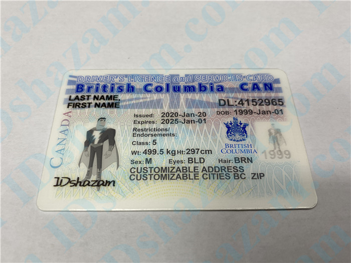 Premium Canada British Columbia Fake ID Card Positive Display