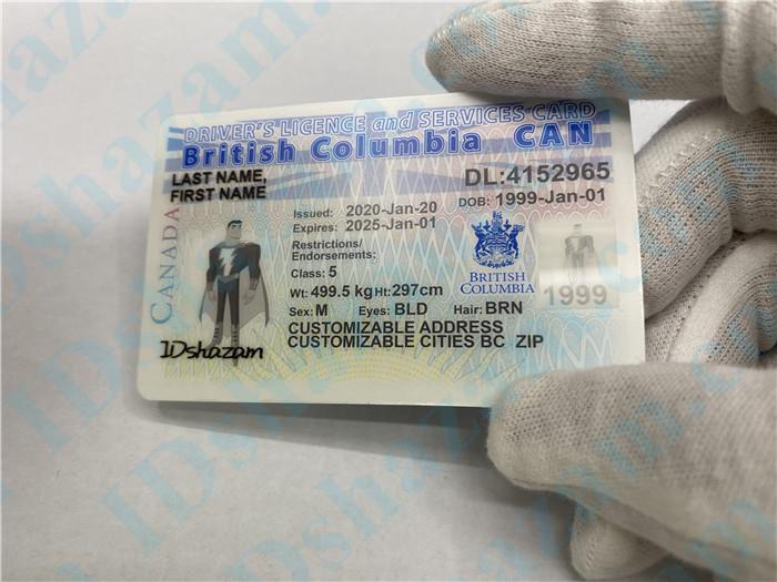 Premium Canada British Columbia Fake ID Card Hologram Display