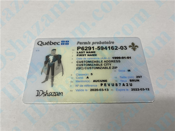 Premium Scannable Canada Quebec Fake ID Card Positive Display