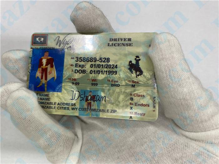 Premium Scannable Wyoming State Fake ID Card Hologram Display