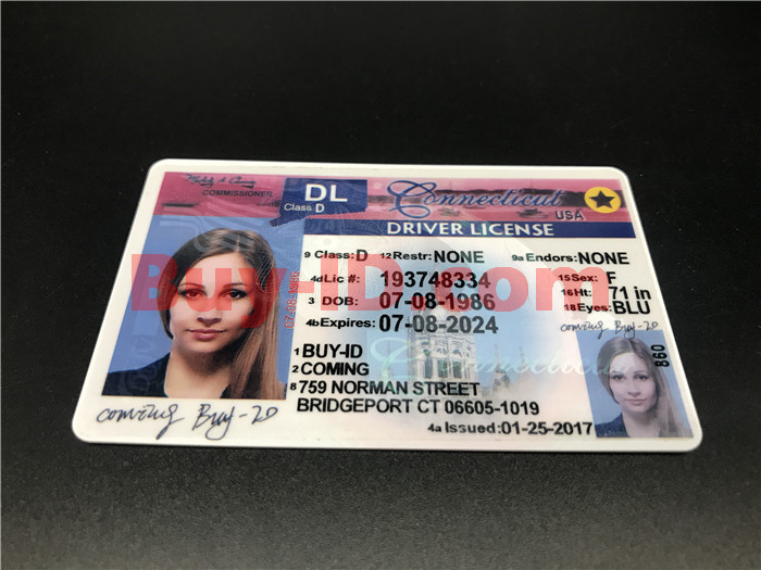 Premium Scannable Old Connecticut State Fake ID Card Positive Display