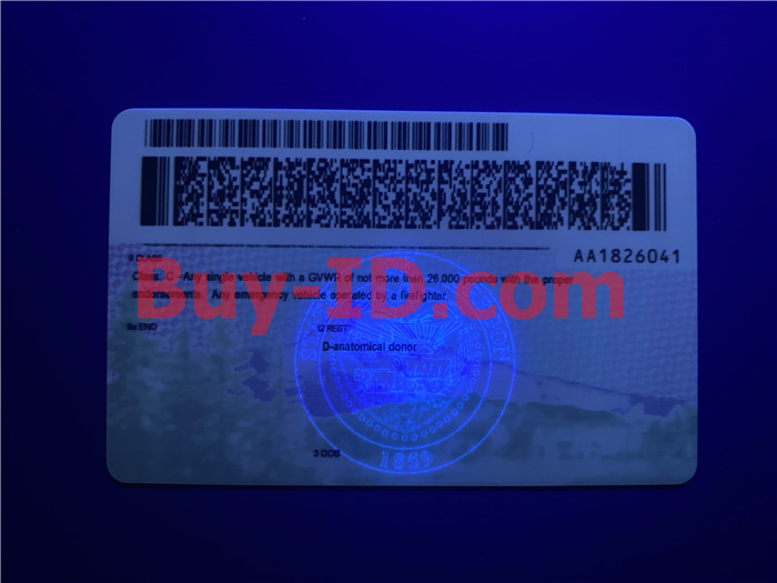 Premium Scannable Oregon State Fake ID Card UV Anti-Counterfeiting Layer 2