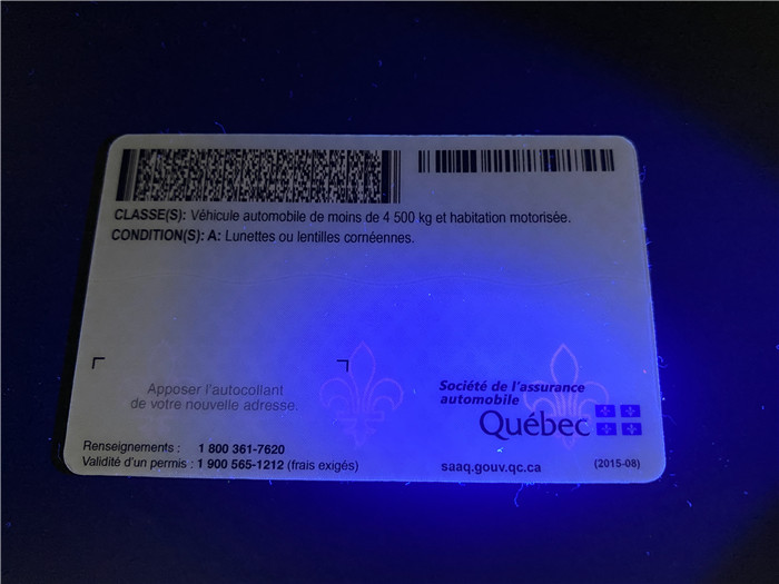 Premium Scannable Canada Quebec Fake ID Card UV Anti-Counterfeiting Layer 2
