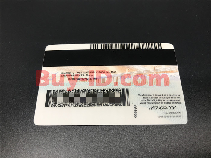 Premium Scannable New California State Fake ID Card Back Display