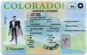 FORGING ID CARD – HOW IT WORKS AND WHAT ARE THE PENALTIES-IDshazam.com